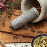 Picture of Chinese Herbal Medicine
